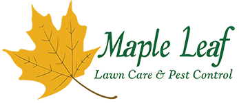 Maple Leaf Lawn Care & Pest Control
